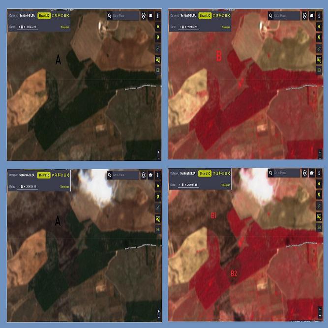 Consulenze cartografiche con l'uso di immagini satellitari